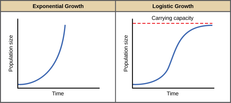 Exponential Growth vs. Logistic Growth