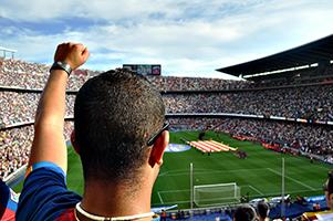 אוהדי כדורגל וקיימות